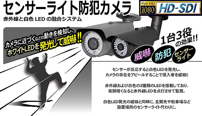 センサーライト防犯カメラ 威嚇をして未然に防ぐ